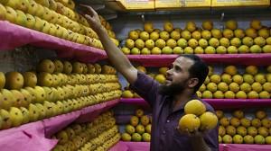 India Europe Mango Ban.